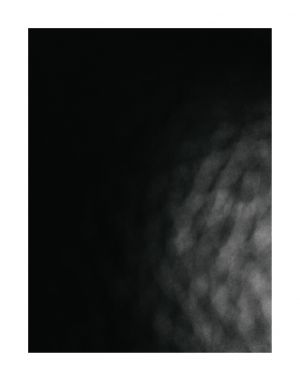 STL_2.jpg